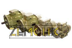 Двигатель 2ДМШ