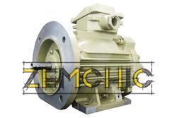 Двигатель 4ДМШ