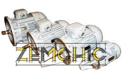 Двигатель асинхронный ДМР 160МА4-02